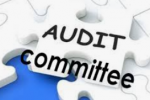 Public Sector Audit Committee – leading practices and trends