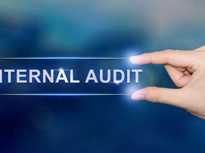 Auditing in local government (SAQA ID 116351)